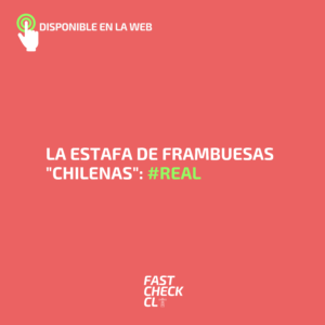 "La estafa de frambuesas ""chilenas"": #Real"