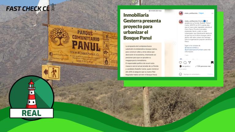 Es posible realizar proyectos de urbanización en el Bosque Panul: #Real
