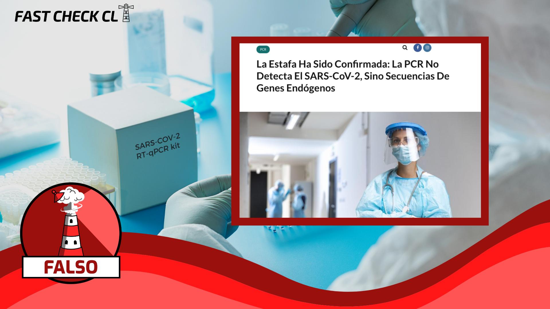 """Read more about the article """"La estafa ha sido confirmada: La PCR no detecta el SARS-CoV-2, sino secuencias de genes endógenos"""": #Falso"""