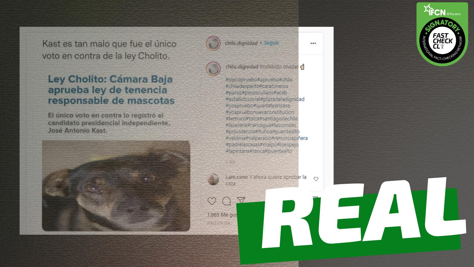 Read more about the article José Antonio Kast fue el único diputado en votar en contra de la Ley Cholito: #Real